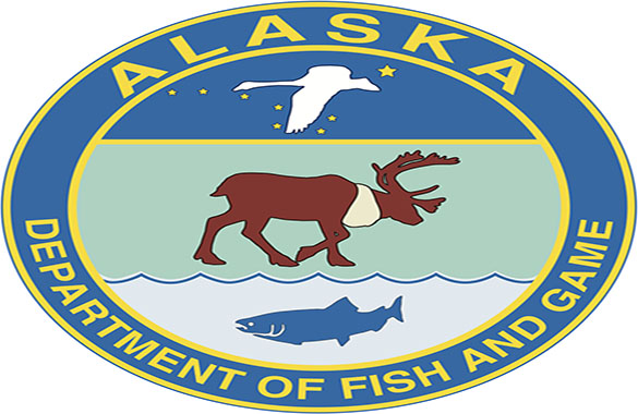 what permits do i need to fish in alaska self guided